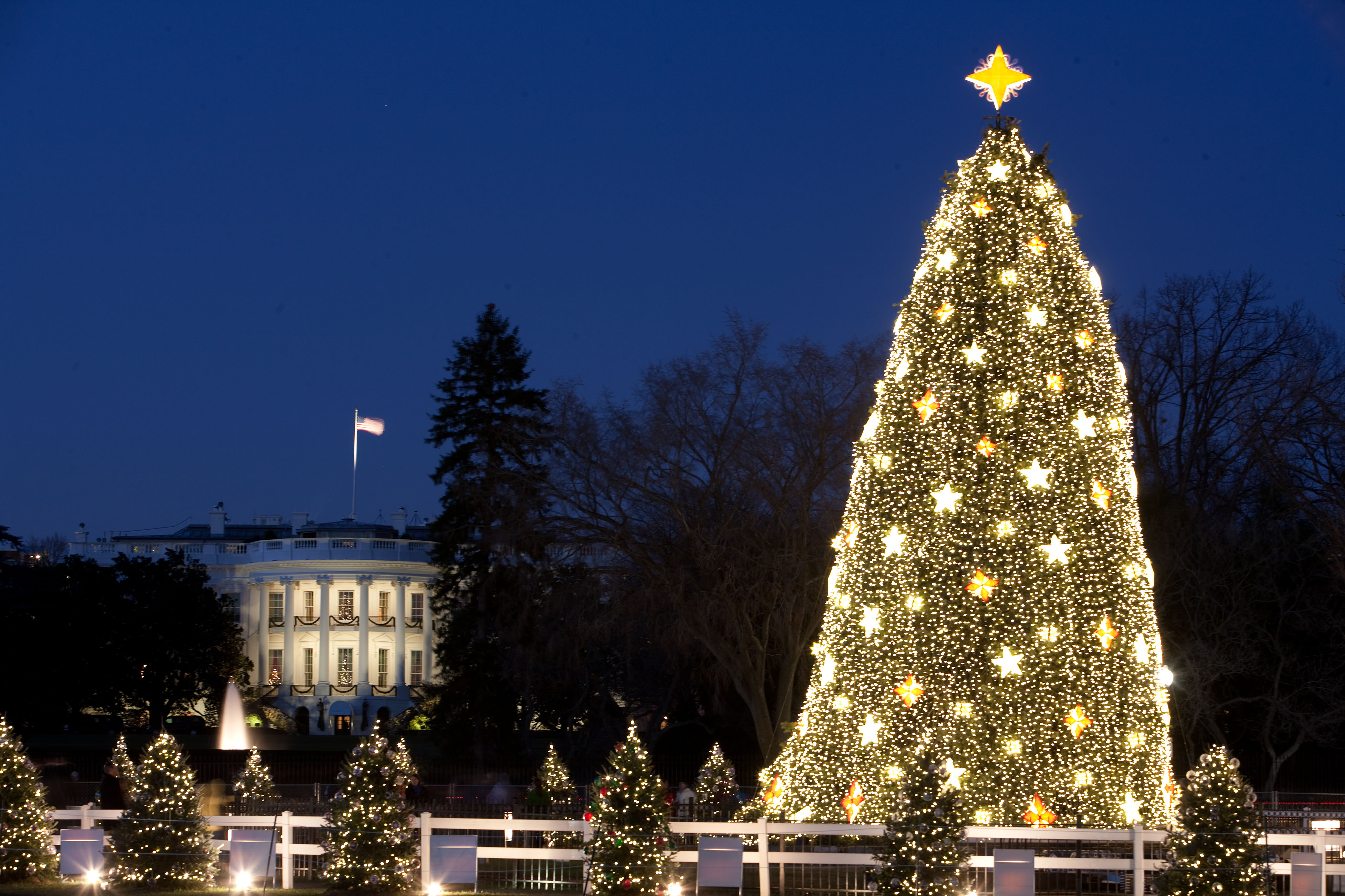 Google Offers A VR Tour of the White House at Christmas Time • Apex ...