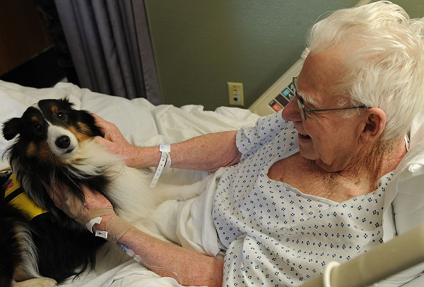 Hospitalized man with dog